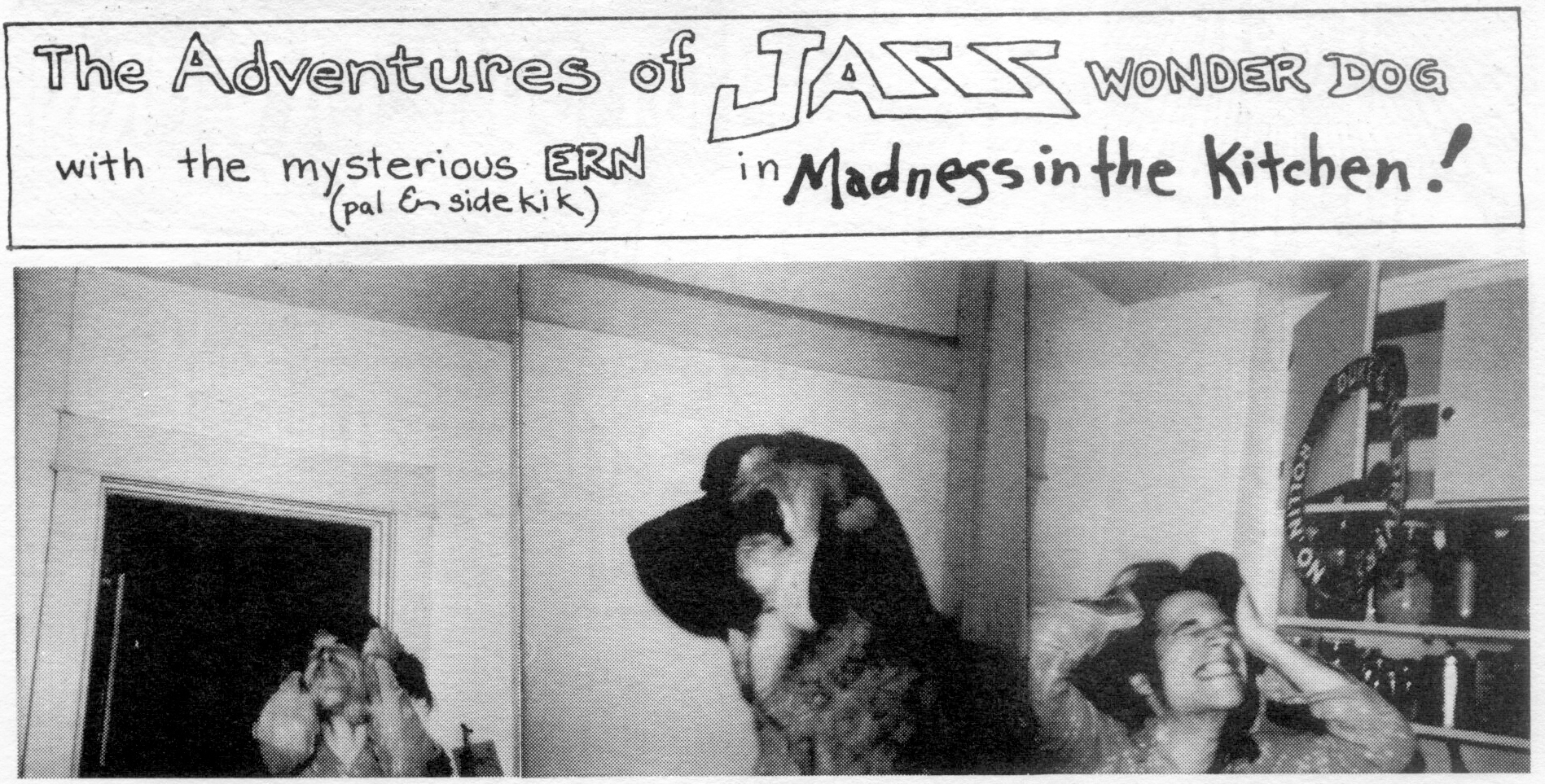 Adventure of Jazz The Wonder Dog